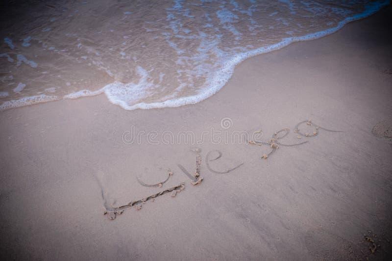 Mer d'amour sur le sable sur la plage photos stock