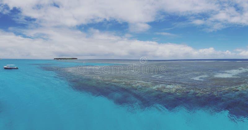 Mer de corail incroyable images stock
