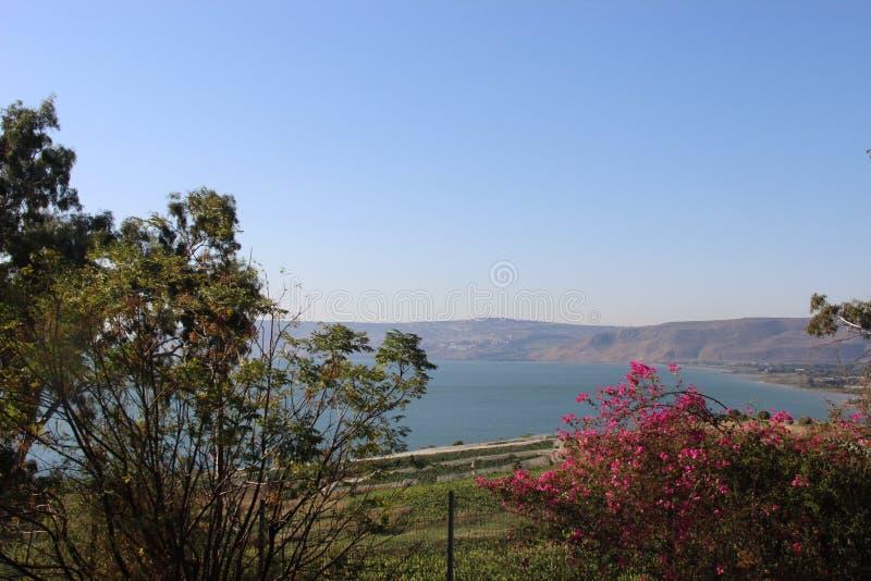 Mer de Galilea image libre de droits