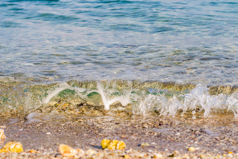 mer de plage tropicale photos libres de droits