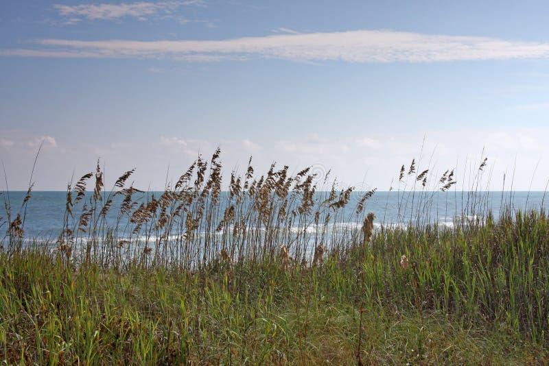 mer de sable photos stock