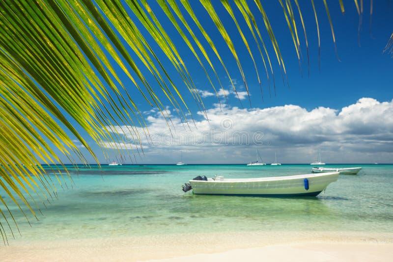 Mer des Caraïbes, belle vue panoramique photos libres de droits