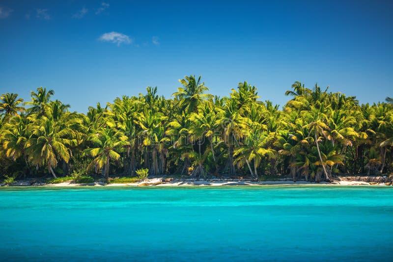 Mer des Caraïbes et île tropicale en République Dominicaine, vue panoramique photographie stock libre de droits