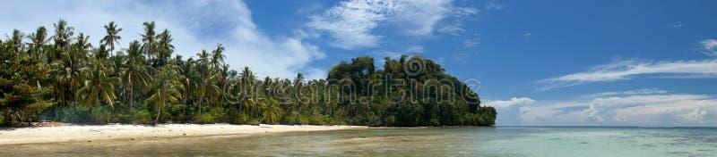 Mer polynésienne tropicale Crystal Water Borneo Indonesia d'océan de Palm Beach de paradis de turquoise image stock