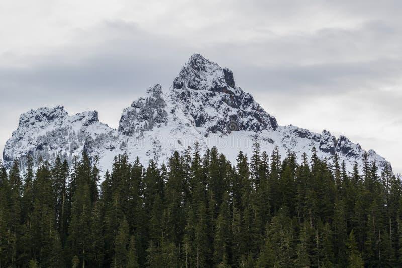 Mer regnig låg snönedgång för Mt på near vid maxima arkivfoto