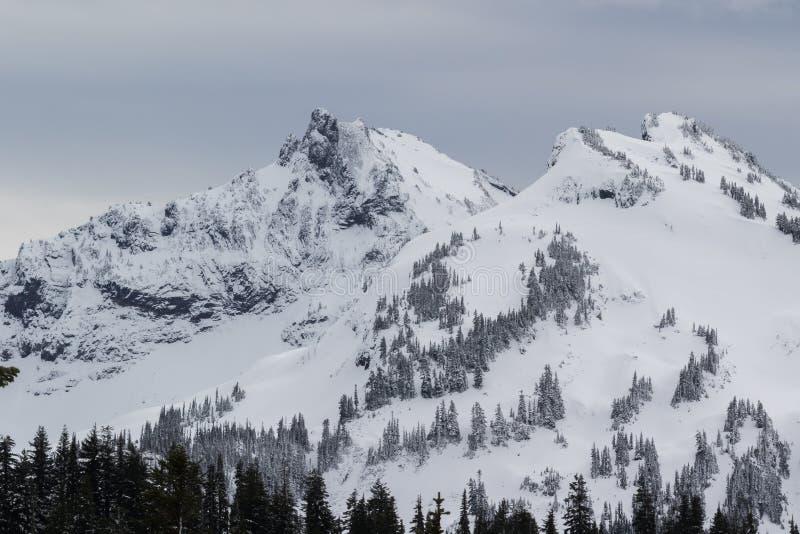 Mer regnig låg snönedgång för Mt på near vid maxima arkivbild