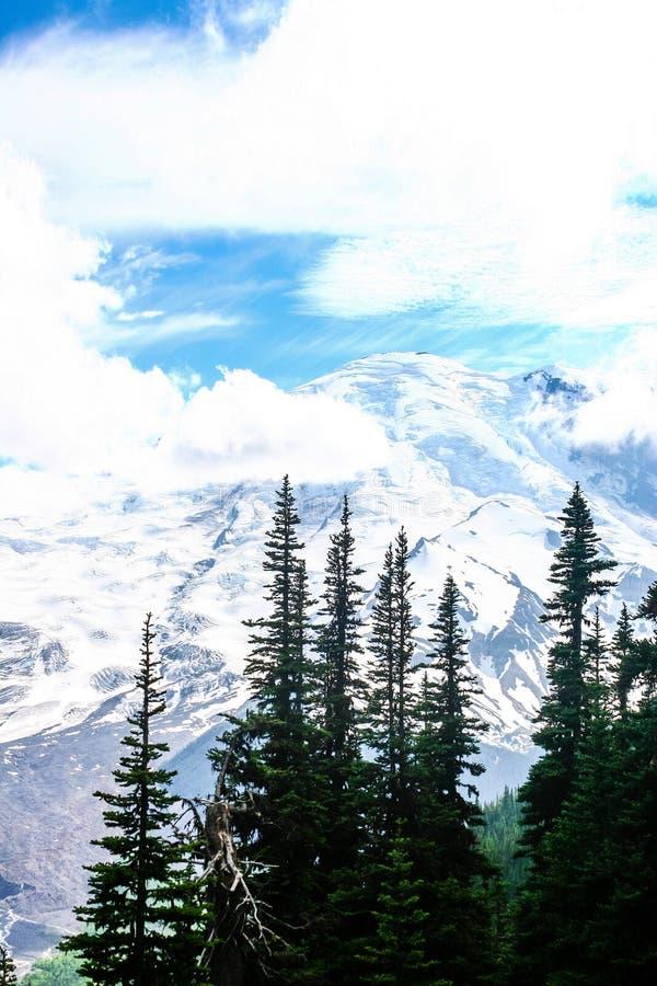 Mer regnig snömaximum för berg i sommar royaltyfri bild