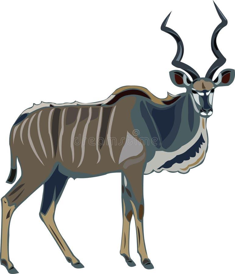 mer stor kuduserie för antilop vektor illustrationer