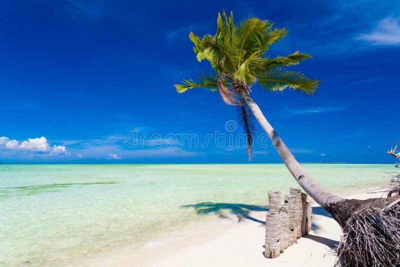 Mer tropicale de jour images libres de droits