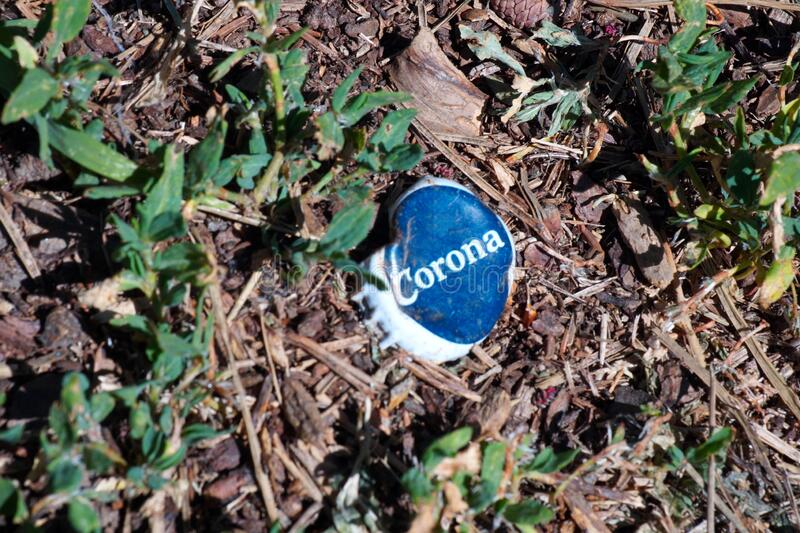 MERANO, ITALY - Oct 04, 2020: Corona beer bottle cup in the grass - concept. MERANO, ITALY - Oct 04, 2020: Corona beer bottle cup in the grass as a symbol of royalty free stock photo