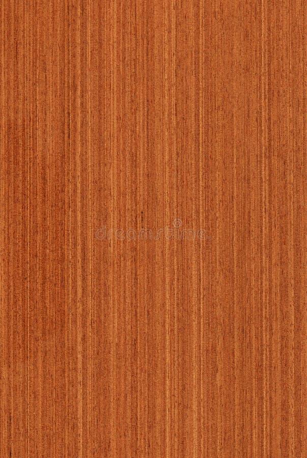 Meranti (houten textuur) stock afbeeldingen