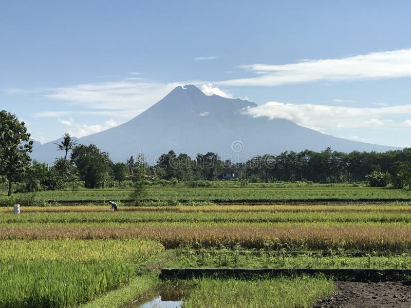 Merapi-Vulkan stockbilder