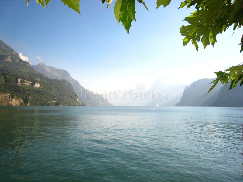 Meravigliosamente vista di panorama con le foglie verdi e un lago svizzero del blu di turchese con le montagne innevate immagini stock libere da diritti