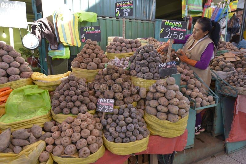 Mercado, Arequipa, Peru imagem de stock
