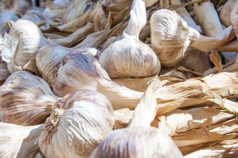 Mercado crecido fresco de la especia del ajo en Francia imagen de archivo