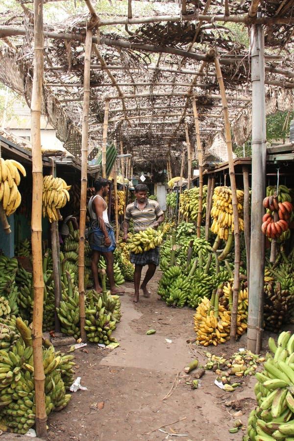Mercado da banana de Madurai fotografia de stock royalty free