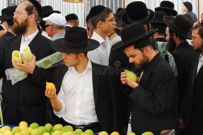 Mercado de cuatro especies para el día de fiesta judío de Sukkot fotografía de archivo