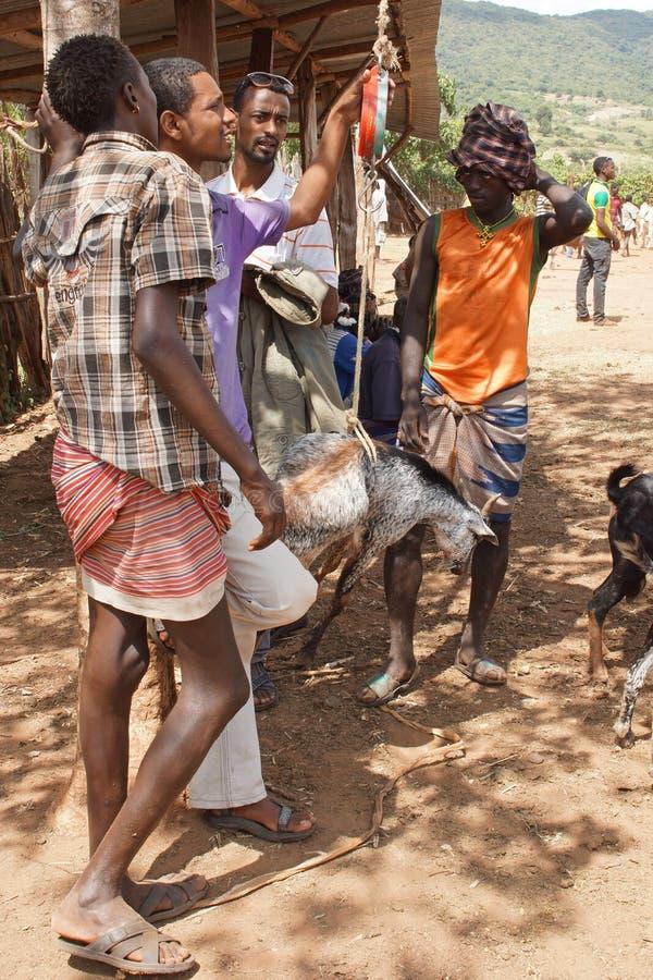 Mercado de gado, Afer chave, Etiópia, África imagem de stock royalty free