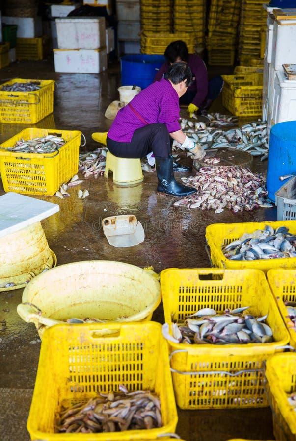 Mercado de Hong Kong Aberdeen Wholesale Fish imagens de stock