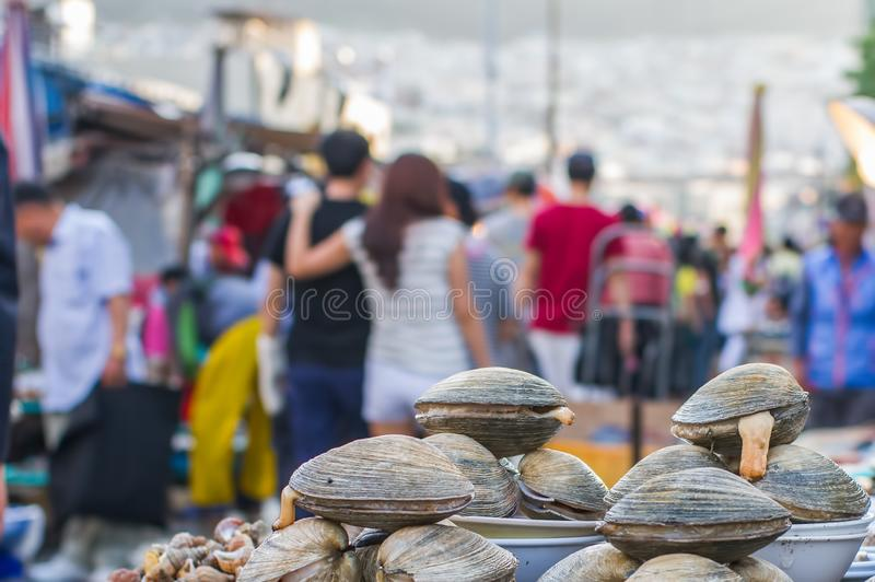 Mercado de Jagalchi - mercado de pescados en Pusan Busán, Corea del Sur - variedad que sorprende de pescados, de almejas, de etc imagen de archivo libre de regalías