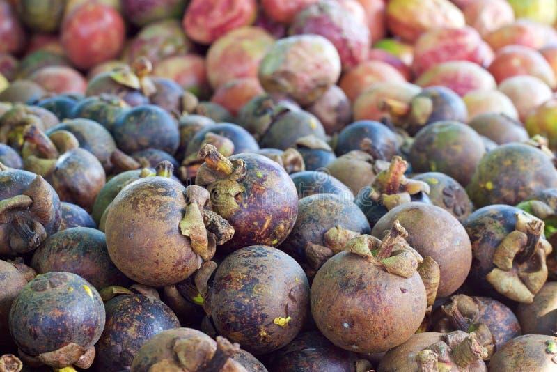 Mercado de la comida de Phuket, Tailandia: mangostanes frescos en el vendedor de la fruta fotografía de archivo libre de regalías