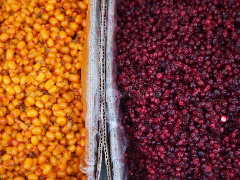 Mercado de la fruta colorida en Mongolia imagenes de archivo