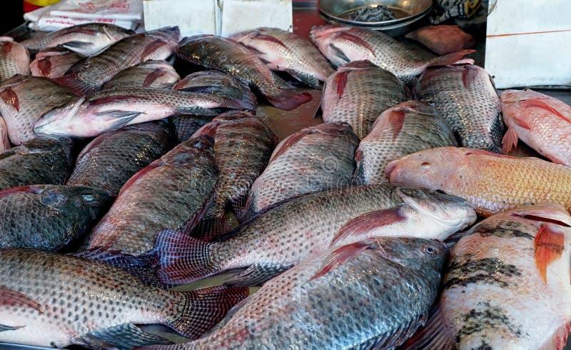 Mercado de la parada de los pescados imagen de archivo libre de regalías