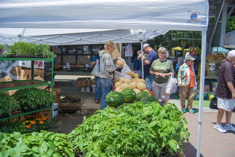 Mercado de los granjeros de la ciudad de Roanoke imagen de archivo
