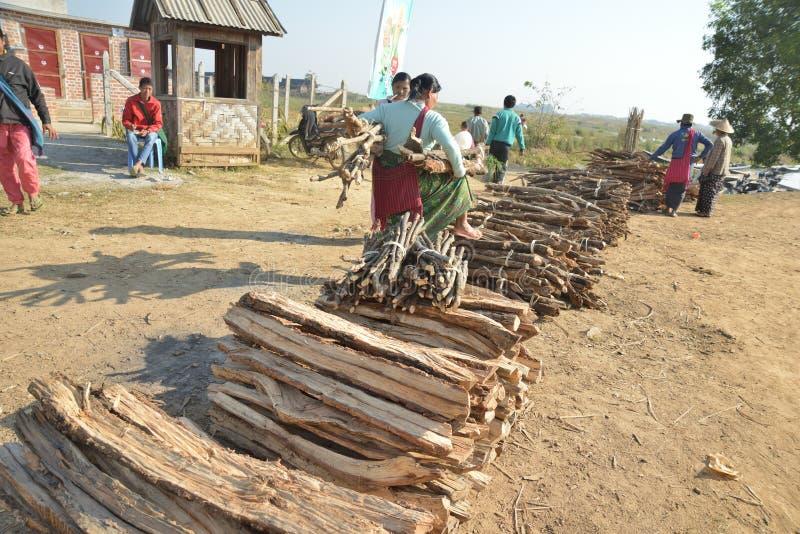 Mercado de madera del inventario del árbol de Myanmar Bagan fotos de archivo libres de regalías