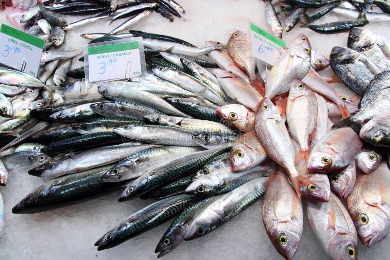 Mercado de peixes de Barcelona fotos de stock royalty free