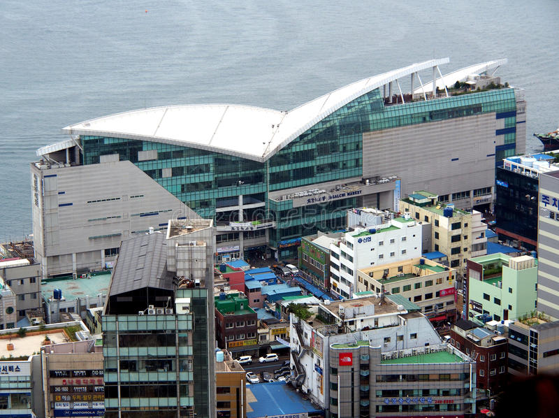 Mercado de peixes de Jagalchi, Busan, Coreia do Sul fotos de stock royalty free