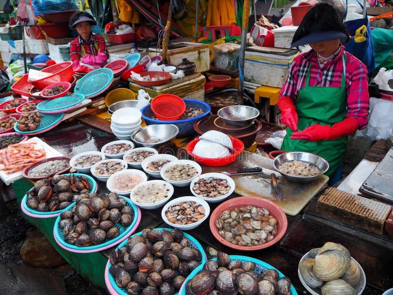 Mercado de peixes em Busan fotografia de stock
