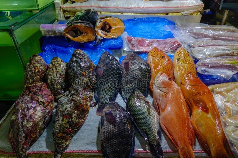 Mercado de peixes em Manila, Filipinas fotos de stock royalty free