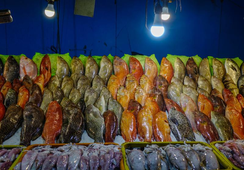 Mercado de peixes em Manila, Filipinas foto de stock