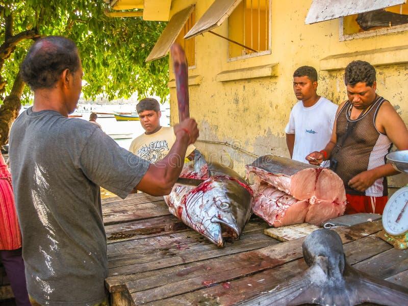 Mercado de peixes de Maurícias fotos de stock royalty free