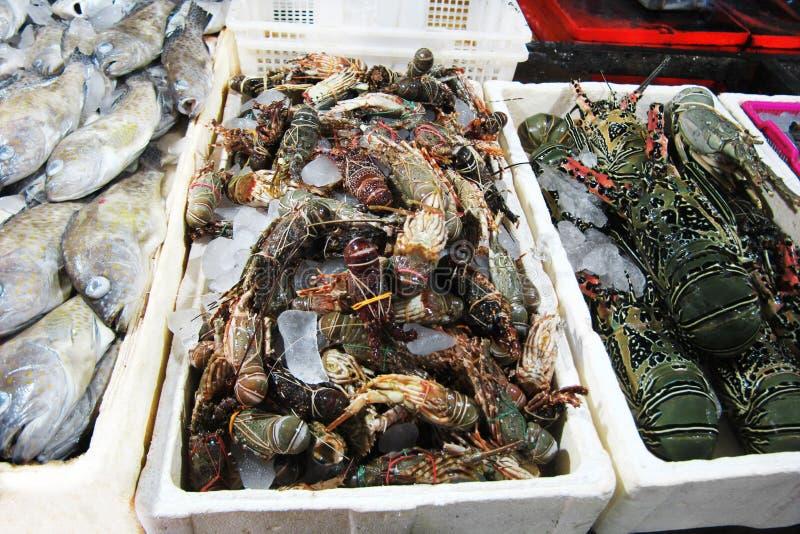 Mercado de pescados con los mariscos frescos fotos de archivo libres de regalías