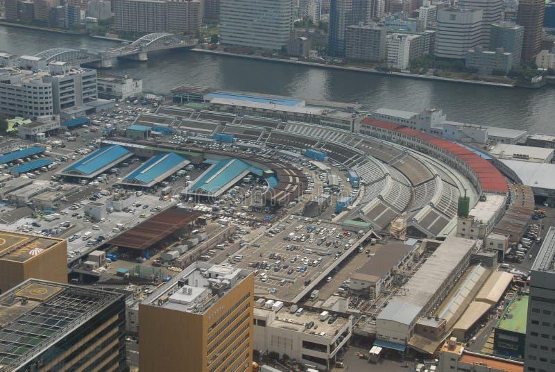 Mercado de pescados de Tsukiji del aire fotografía de archivo libre de regalías