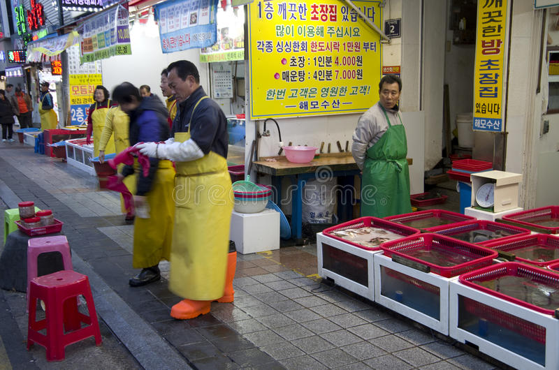 Mercado de pescados en Busán Corea fotos de archivo libres de regalías