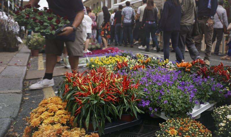 Mercado de rua misturado do ob da venda da flor fotos de stock royalty free