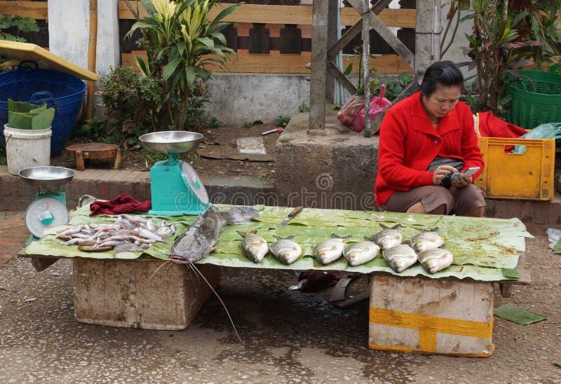 Mercado do ar livre, Luang Prabang, Laos imagem de stock