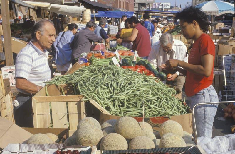 Mercado do fazendeiro em Boston fotografia de stock royalty free