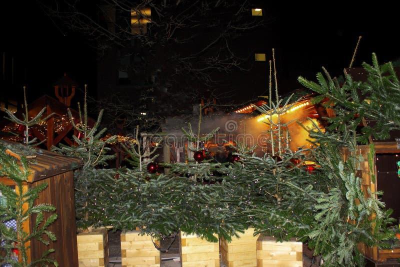 Mercado do Natal em Alemanha Venda da árvore de Natal na rua de nivelamento fotografia de stock royalty free