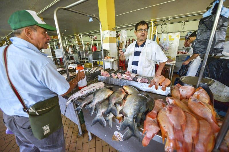 Mercado em San Gil, Colômbia fotos de stock royalty free