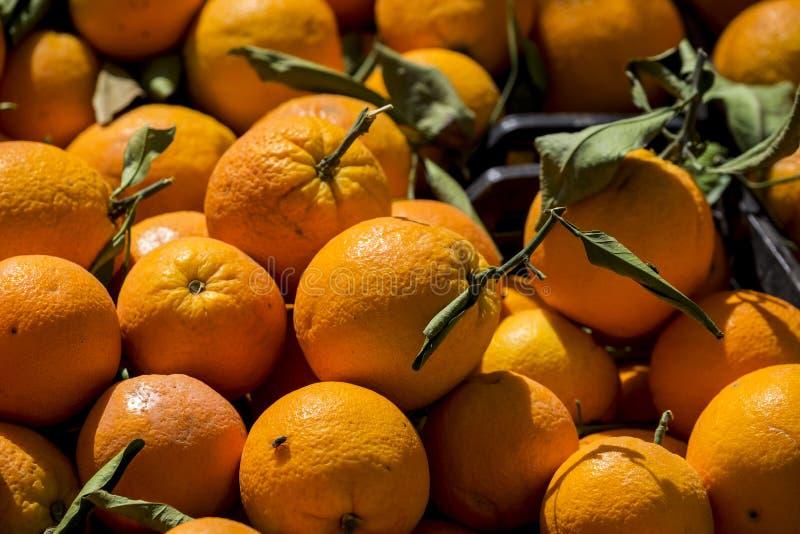 Mercado en el vender para listas Naranjas стоковое фото