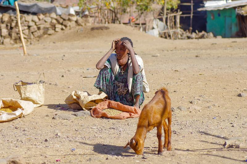 Mercado etíope vívido fotografia de stock