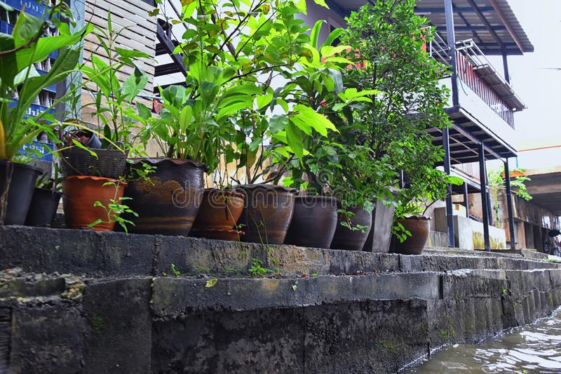 Mercado flotante por Bangkok Tailandia, Damnoen Saduak. Vistas desde un barco turístico de tiendas locales, canales y paisaje veg imágenes de archivo libres de regalías