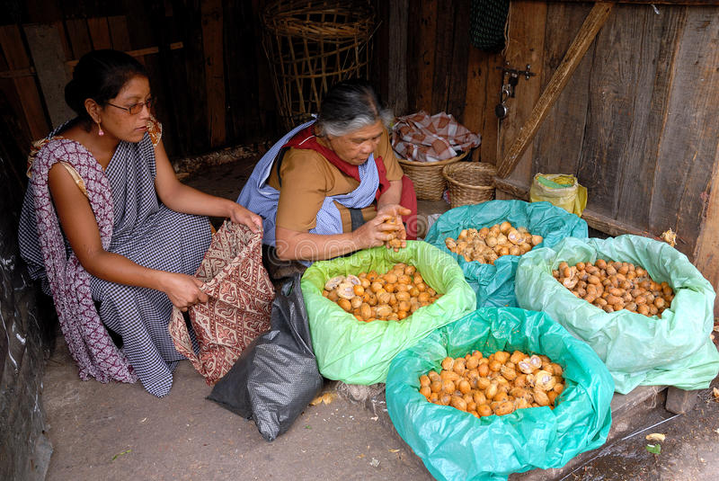 Download Mercado indiano foto de stock editorial. Imagem de betel - 16855513