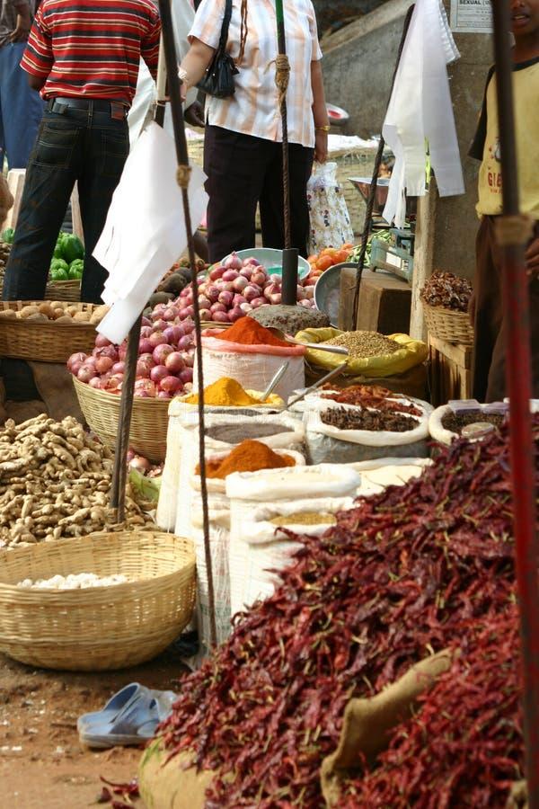Mercado indiano da especiaria e do alimento fotos de stock