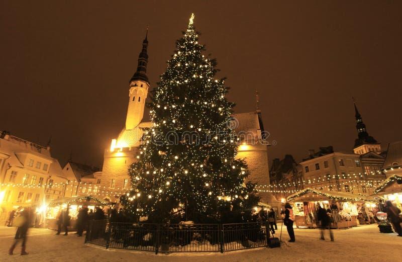 Mercato di Natale di Tallinn con l'albero di chirstmas fotografie stock