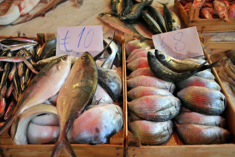 Mercato di pesce fresco a Palermo, Sicilia, Italia immagine stock libera da diritti